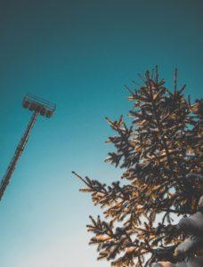 nacelle pour travaux d'entretien d'arbres en hauteur